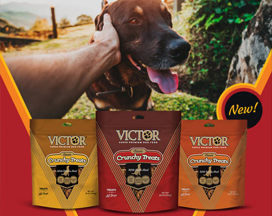 VICTOR CRUNCHY DOG TREATS